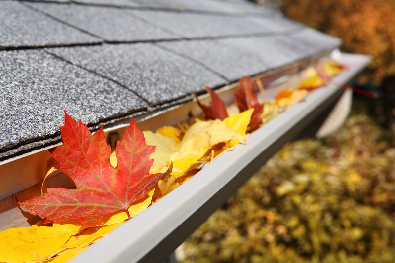 Fall Home Care: Get Ready for Winter Early
