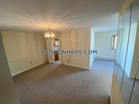 Arlington Huge 1 bed right on Mass Ave Located in Arlington  - $1,950 No Fee